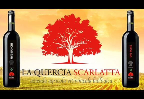La Quercia Scarlatta vino VEGANOK!